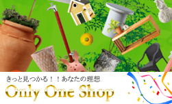 only one shop